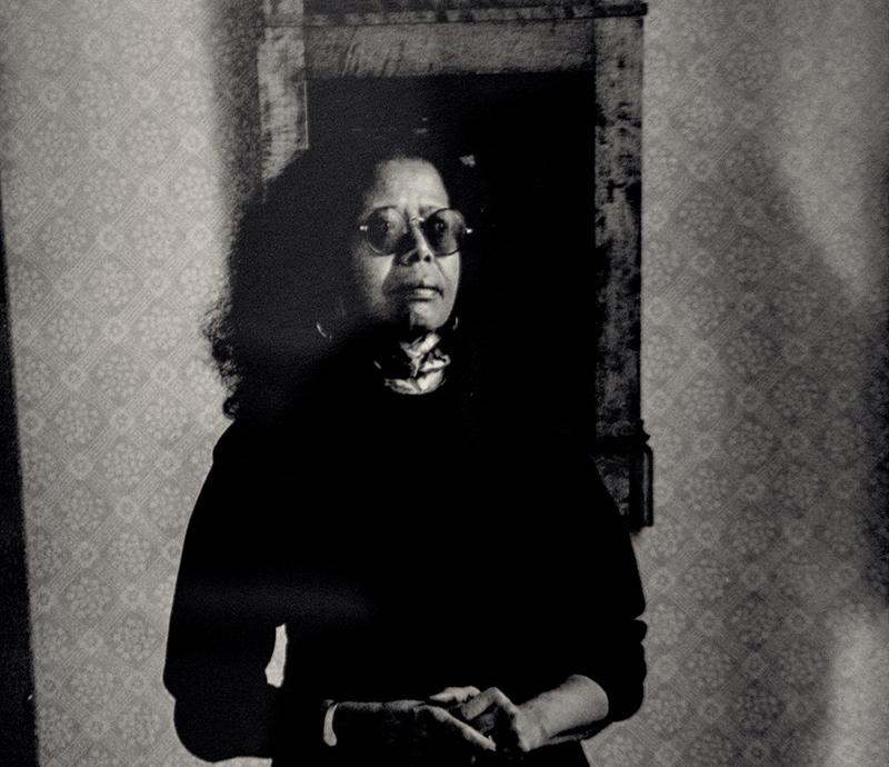 جين كورتيز.. سريالية الهوامش